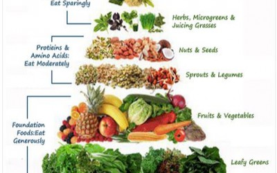 What's all the buzz about Raw Food?